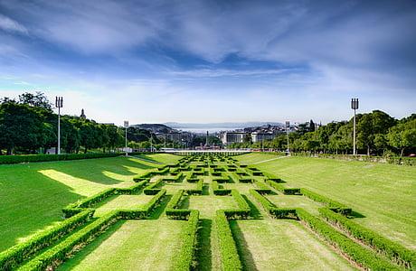 green lawn field