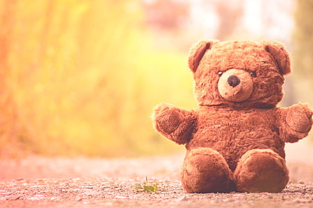 shallow focus photography of a bear plush toy