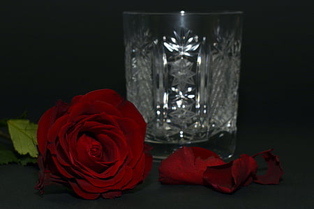 crystal cut drinking glass beside red rose