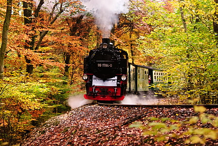 red and black train