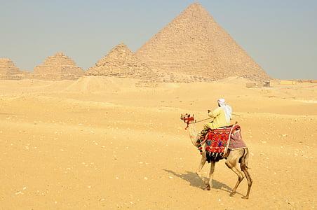 man riding camel near Pyramids of Giza in Egypt