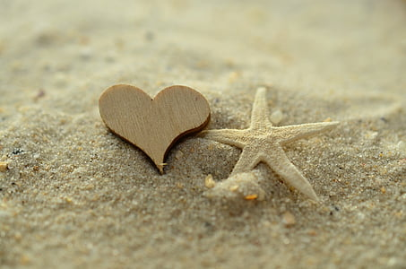 brown wooden heart decor and white star fish