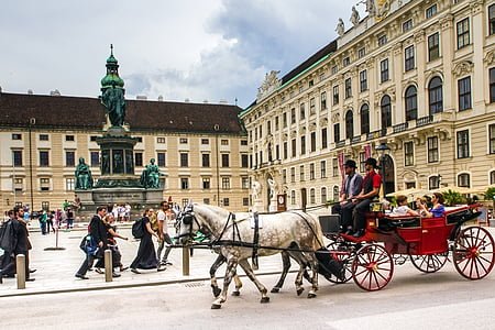 group of people riding horse carriage during daytime