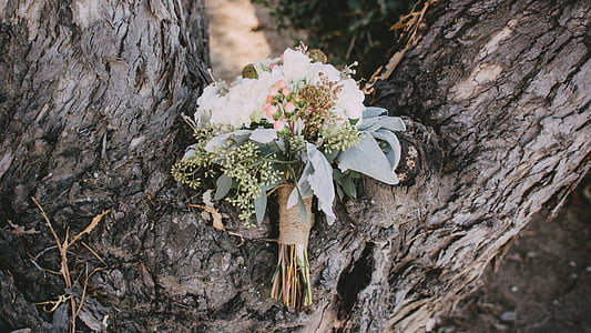 bouquet of flowers on tree log