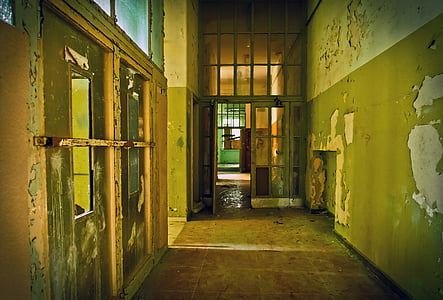 photo of green and beige hallway