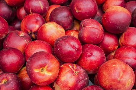 honeycrips apple lot