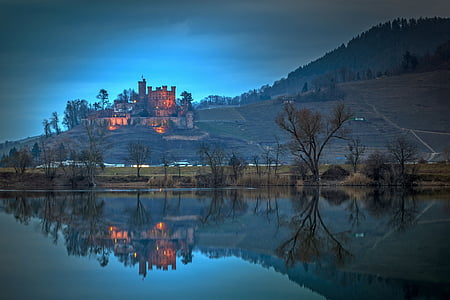 reflective photography of trees and castle