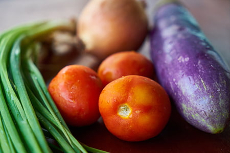 washed eggplant, tomatoes and green onions close-up photography
