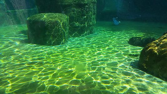 brown concrete column underwater