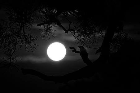 full moon scenery