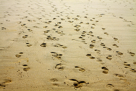 people's footprints in the sand