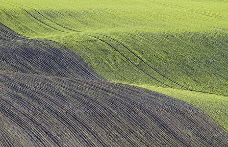 green and gray fields