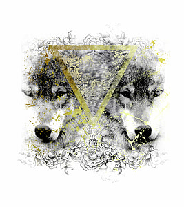 two black and white wolf illustration