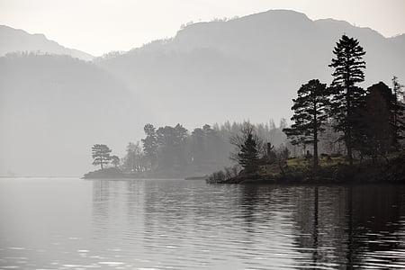 foggy trees and lake
