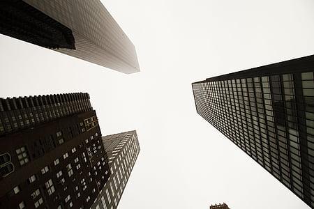 black buildings