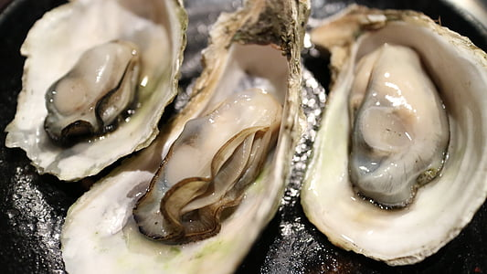 photo of three oysters