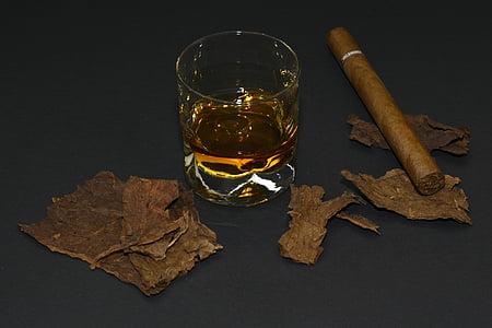 clear drinking glass near leaf