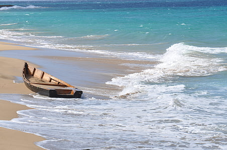 brown canoe on shore at daytime