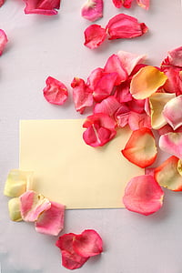 yellow printing paper surround pink flower petals