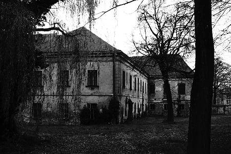 landscape photo of ruin
