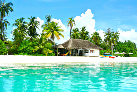 brown and white house on seashore beside coconut trees near green calm sea