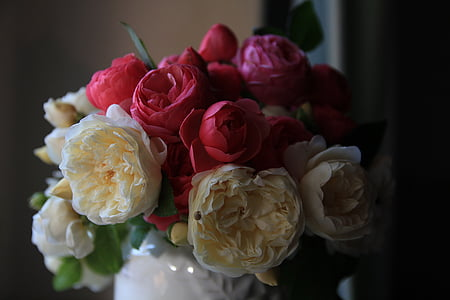 selective focus photography of white and red roses