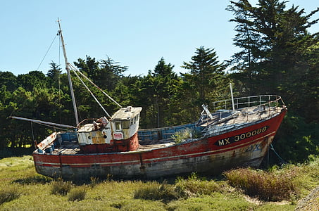 red and grey fishing boat on green grass field