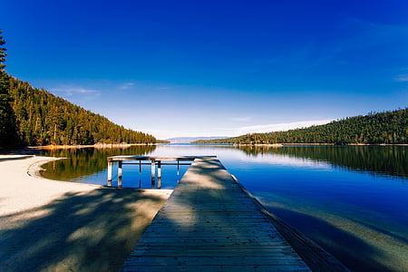 brown wooden river dock