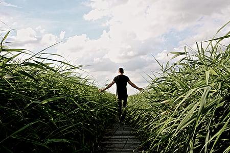 person wearing black top walking in between of green grass