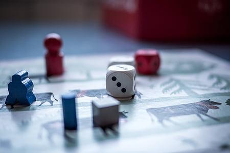 closeup photo of dice
