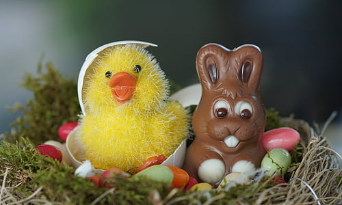 duck and bunny toy on basket