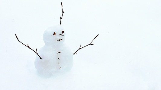 snowman with twig arms