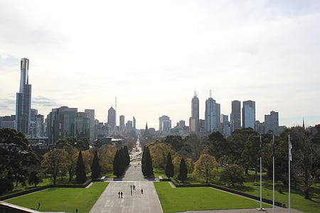 top view of parkway under clear sky during daytime