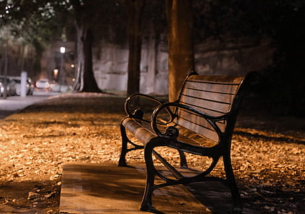 brown and black bench taken beside tree