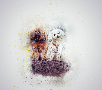 white and brown puppies painting