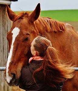 girl kissing brown horse