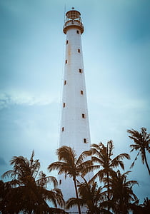 white lighthouse and coconut tree line photo during daytime