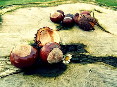 round brown fruit