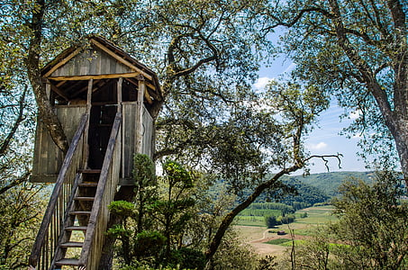 brown tree house during daytime