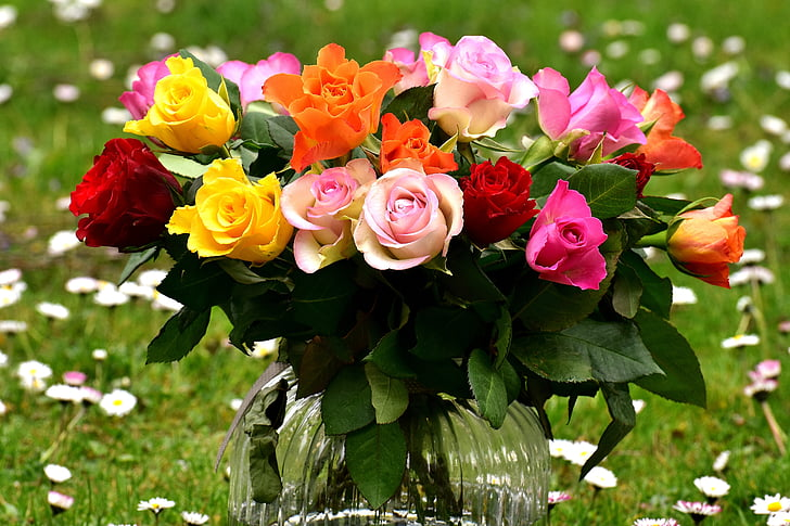 Royalty free photo red yellow pink and white rose bouquet pickpik red yellow pink and white rose bouquet mightylinksfo