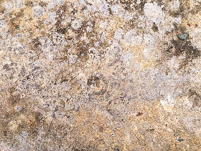 wall, wild, stone, texture, pattern, construction