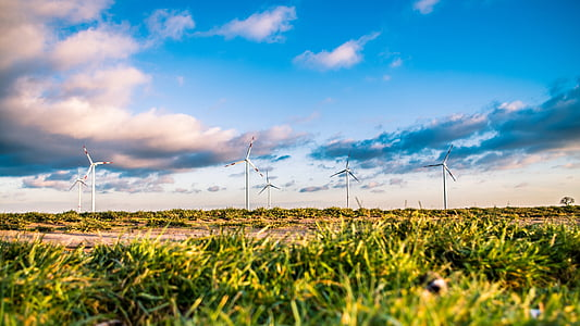 white windmills at daytime