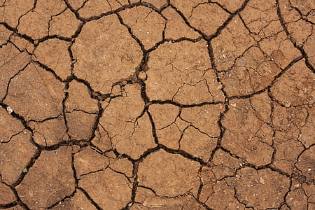 dry soil at daytime