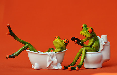 two green frogs in bathtub and toilet bowl