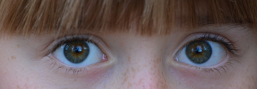 close-up photo of person's eyes