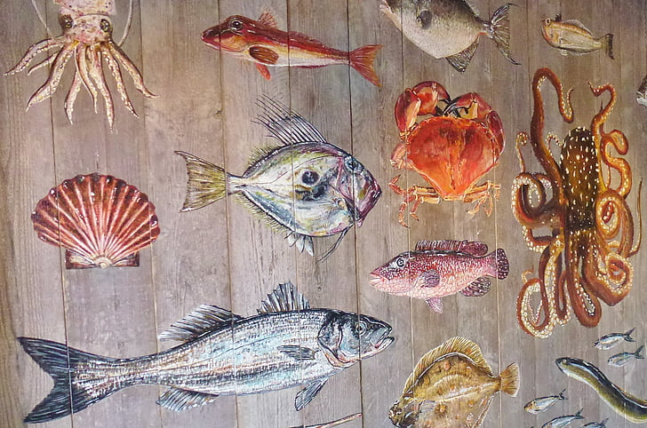 variety of sea creatures mural