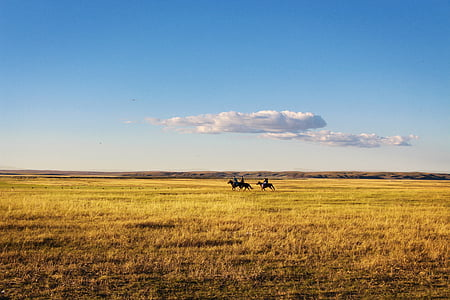 three person riding black horse at yellow field at daytime