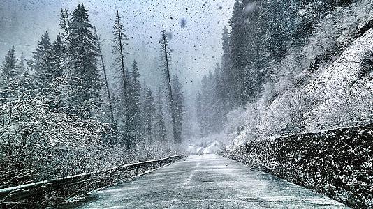 snowy trail wallpaper
