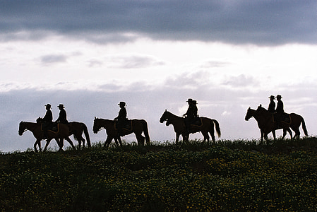 silhouette of seven people riding on horses