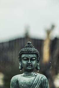 selective focus photo of jade buddha